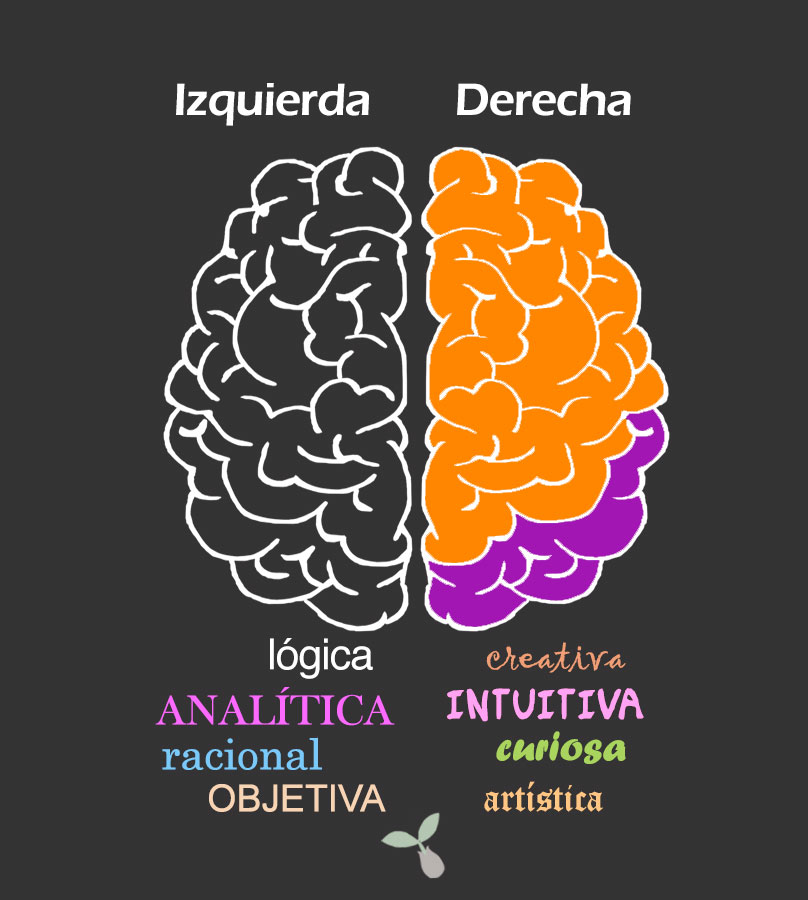 marketing cerebro